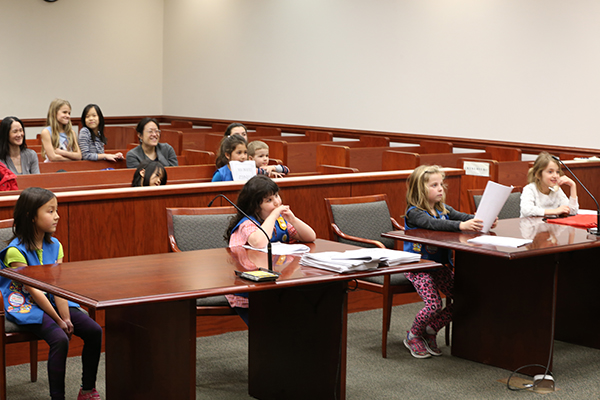 Daisies at courthouse mock trial