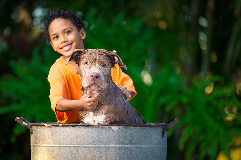 child washing a dog outside